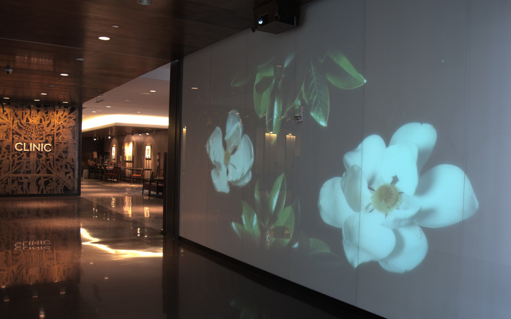 University Medical Center commissions interactive video installations