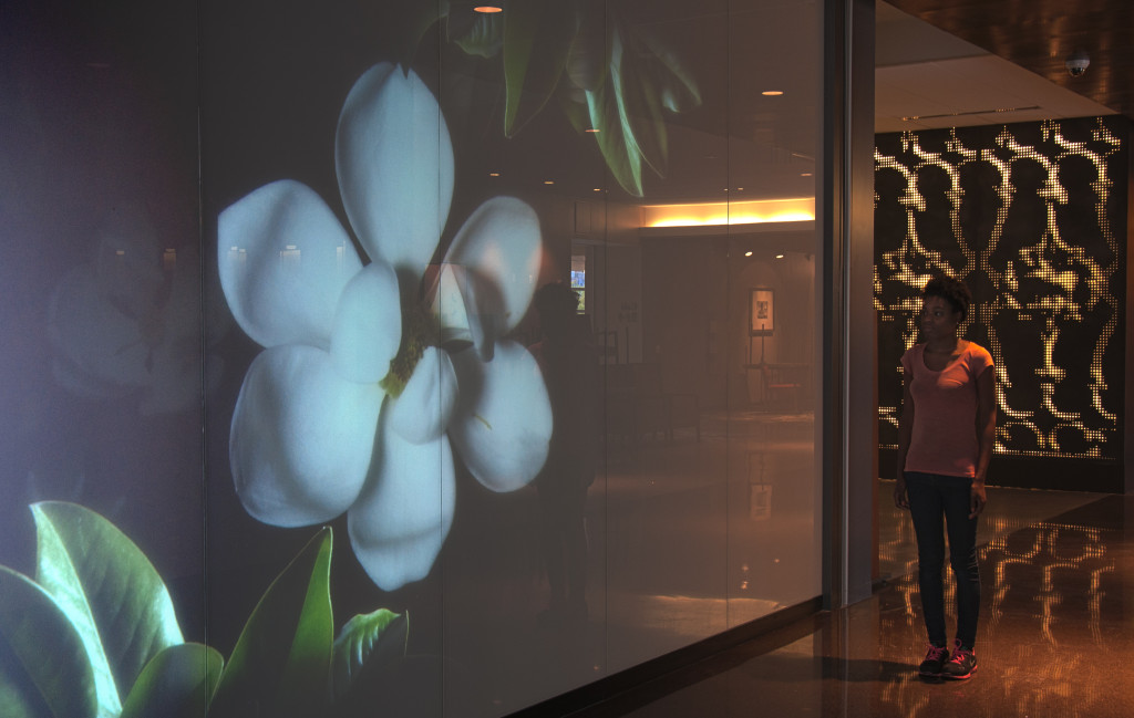 Interactive flower in the University Medical Center lobby